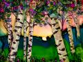 Birch-Trees-6-25-2017-g-800dpi