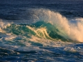 waves-from-JeanneYoung