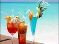 6x6-tropical drinks