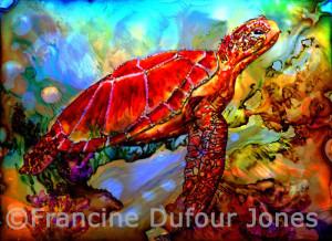 turtle-copyright